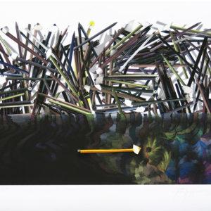 Impresión digital-lápiz color y aguafuerte-plegado, 70x87cm, 2013