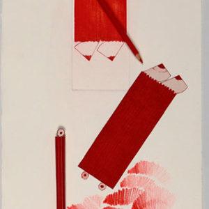 Lápiz-madera-cordón, 25x36x5cm, 2011