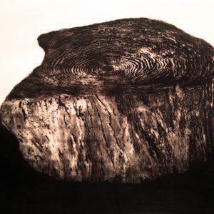 Aguafuerte-aguatinta, 50x60cm, 2012