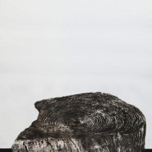 Aguafuerte-aguatinta, 101x59cm, 2012